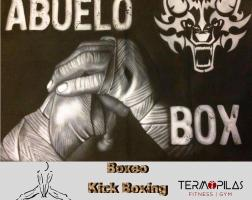 Boxeo Termopilas Fitness Gym